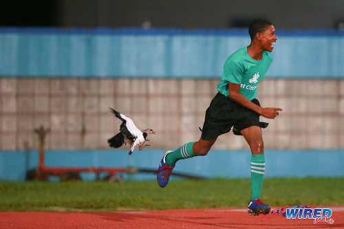 Photo: Trick or treat! A ball boy runs for cover during the First Citizens Cup final at the Ato Boldon Stadium in Couva. (Courtesy Allan V Crane/Wired868)
