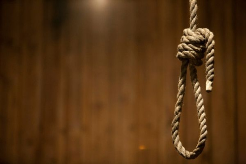 Photo: The hangman's noose. (Copyright AYV News)
