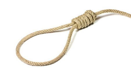 Photo: Is no noose good noose?