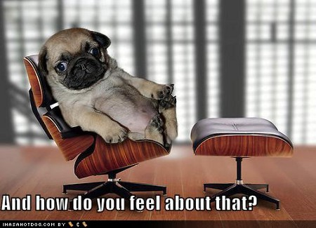 Photo: Is your psychiatrist a dog? How does that make you feel?
