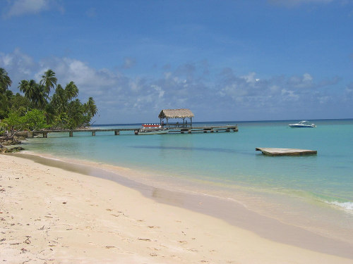 Photo: A beautiful beach in Tobago.