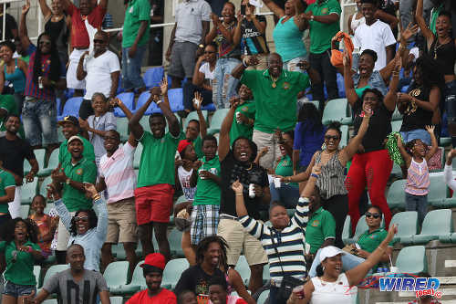 Photo: Guaya United fans celebrate Ryan Stewart's decisive goal against Petrotrin Palo Seco in the CNG National Super League KO final. (Courtesy Chevaughn Christopher/Wired868)