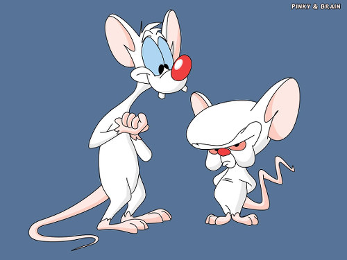 Photo: I ent working another day until I talk to my union leader! (Copyright Pinky and the Brain)