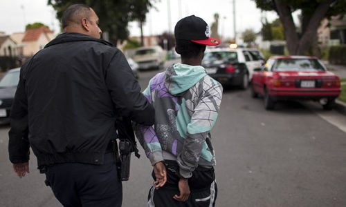 Photo: Police apprehend a young man in Los Angeles. Lawmen are perhaps trained to deal with little black boys and the Canine and Mounted Branches are certainly trained to deal with dogs and horses respectively. But are any policemen trained to deal with animals? (Copyright Channel4.com)