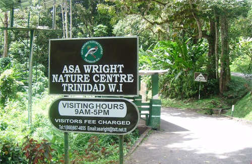 Photo: The Asa Wright Nature Centre. (Courtesy Playboxtt)