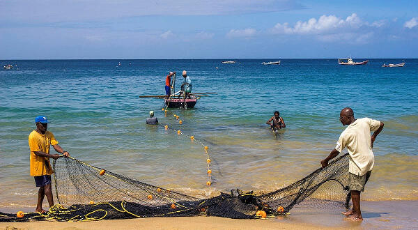 Are fishermen non-essential? MoH touches on fish, homes for the aged and public masks