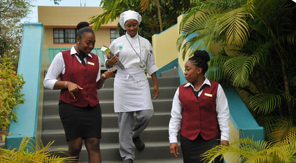 Dear Editor: Hospitality students left in the lurch by TTHTI closure